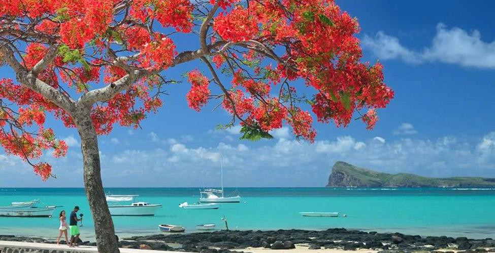 La MTPA lancera un 'Tourism Branding'