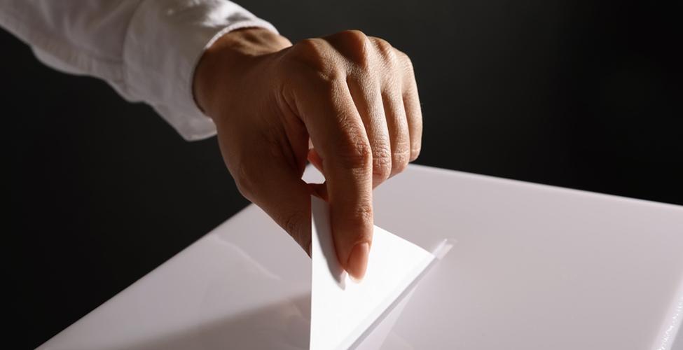 Elections générales : la liste officielle des partis enregistrés et leurs symboles