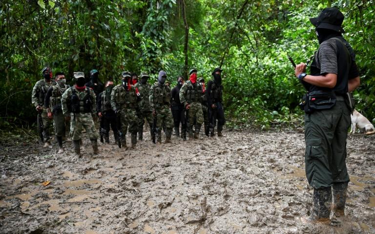 Coronavirus: la guérilla de l'ELN annonce un cessez-le-feu en Colombie