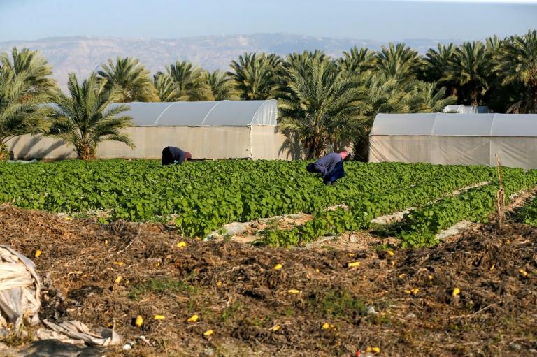 Après la victoire de Netanyahu, la crainte de l'annexion en Cisjordanie