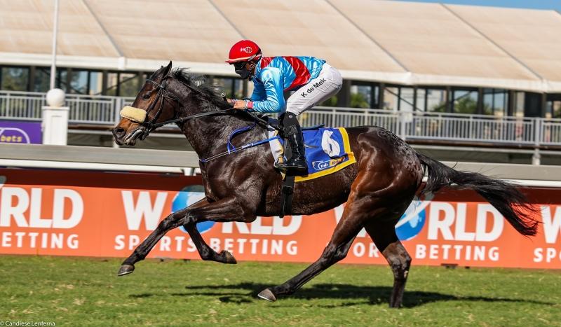 Nouvelles unit�s : Un contingent de 29 chevaux d�barquent ce vendredi